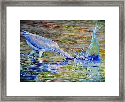 Splash Fishing Framed Print