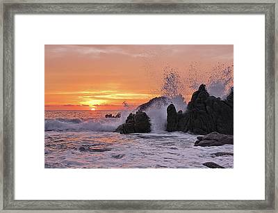 Splash  Framed Print by Marcia Colelli