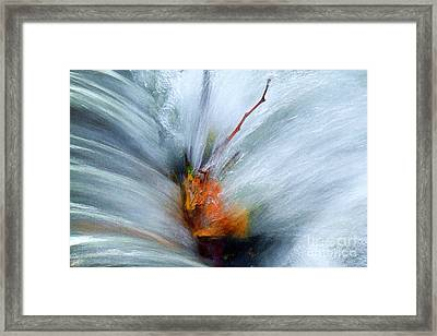 Framed Print featuring the photograph Splash O Color by Thomas Bomstad