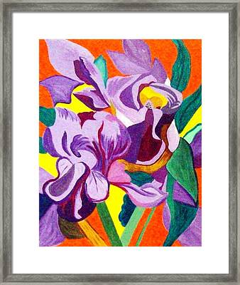 Splash Of Colour Framed Print