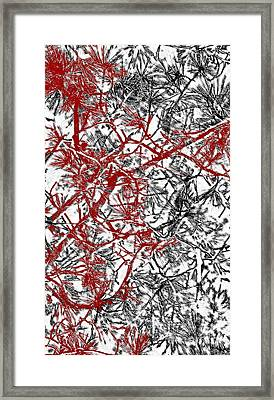 Splash Of Red Framed Print by Gwyn Newcombe