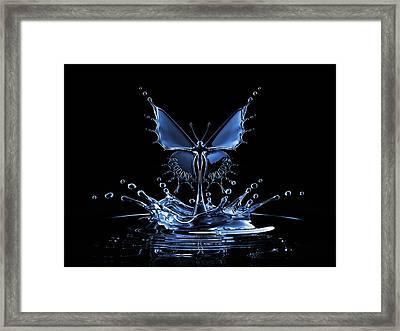 Splash Of Water Butterfly Framed Print by Blackjack3d