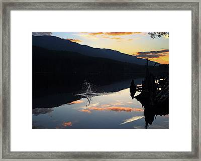 Splash Framed Print by Randy Hall