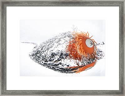 Splashie Framed Print