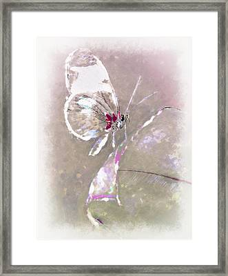 Splatter Framed Print by Jill Balsam