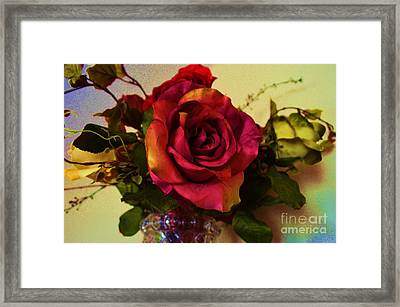 Splendid Painted Rose Framed Print