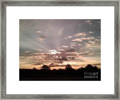 Splendid Rays Framed Print by Susan Williams