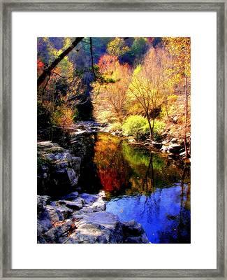 Splendor Of Autumn Framed Print by Karen Wiles