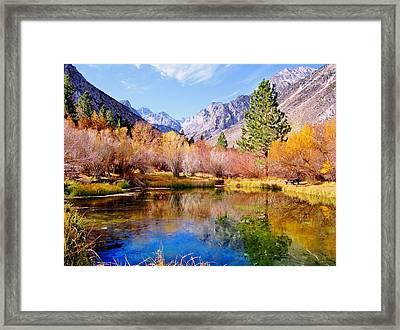 Splendor Of Fall Framed Print by Marilyn Diaz