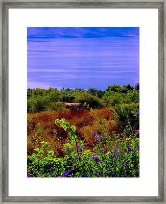 Splendor Of The Mount Of Beatitudes And The Sea Of Galilee Framed Print by Sandra Pena de Ortiz