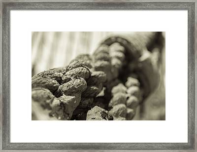Spliced And Bound Black And White Sepia Framed Print by Scott Campbell