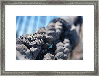 Spliced And Bound Framed Print by Scott Campbell