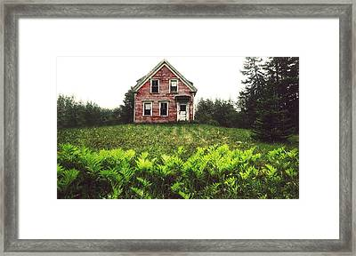 Splinter  Framed Print by Kenny  Noddin