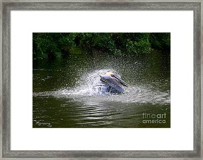 Splish-splash I Was Taking A Bath... Framed Print