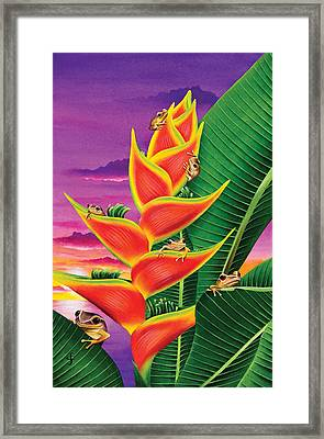 Split Level Sunset Framed Print by Carolyn Steele