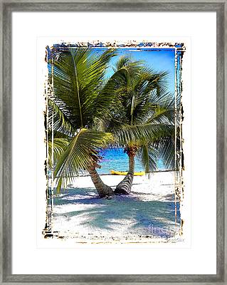 Split Palm With Kayak Framed Print by Linda Olsen