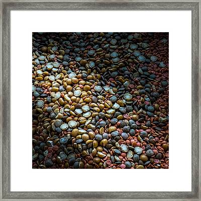 Split Pea Abstract Framed Print by Bob Orsillo