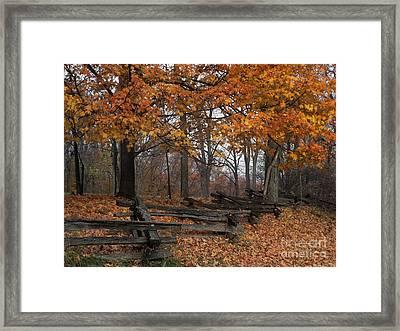 Split Rail Autumn - Fm000085 Framed Print