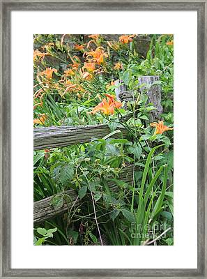 Framed Print featuring the photograph Split Rail Fence by Laurinda Bowling