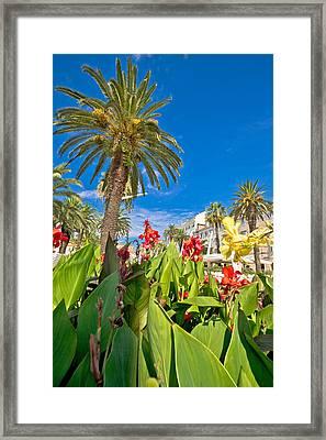 Split Riva Palms And Flowers Framed Print