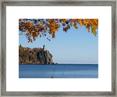 Split Rock Leaves Framed Print