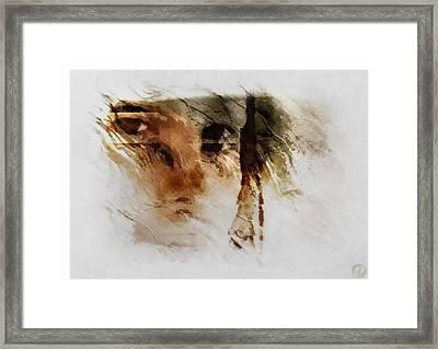 Split Vision Framed Print by Gun Legler