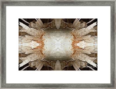 Spock Face  Framed Print by John Johnson