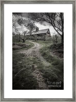Spooky Apple Orchard Framed Print by Edward Fielding