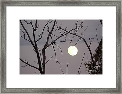 Spooky Moon Framed Print by Deborah Smolinske