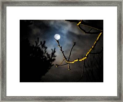 Spooky Moon Framed Print