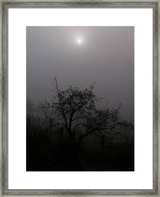 Spooky Night Framed Print