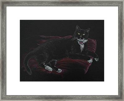 Spooky The Cat Framed Print by Michele Myers