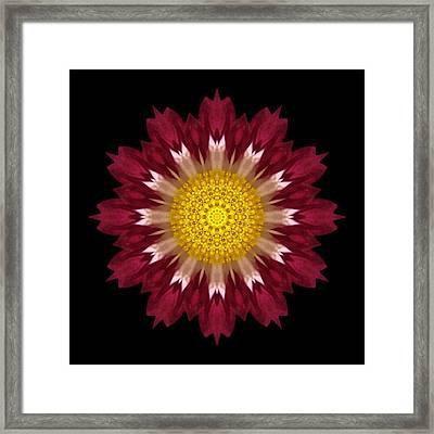 Spoon Chrysanthemum I Flower Mandala Framed Print