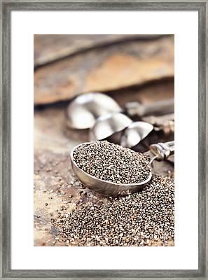 Spoonful Of Chia Seeds Framed Print by Stephanie Frey