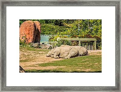 Spooning Framed Print by Steve Harrington