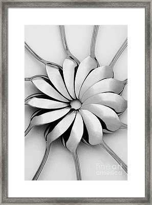 Spoons I Framed Print