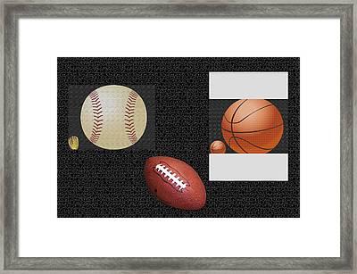 Sportsmanship Framed Print by Tina M Wenger