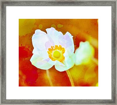 Spot Of Color Framed Print by Cathie Tyler