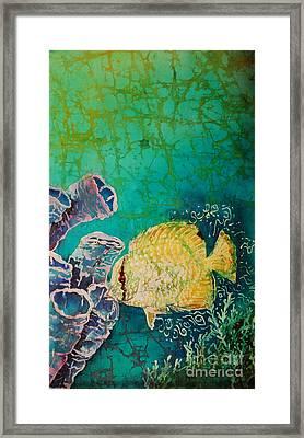 Spotfin Butterflyfish  Framed Print by Sue Duda