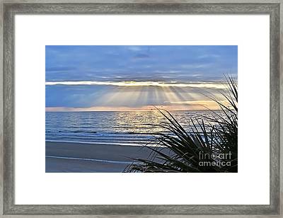 Light Of The Way Framed Print