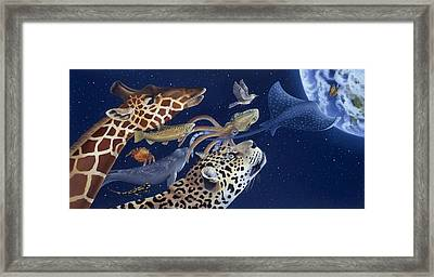 Spots Collage Framed Print by Laura Regan