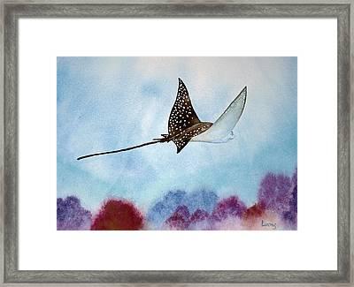 Spotte Eagle Ray 1 Framed Print