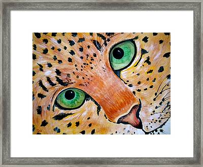 Spotted Framed Print