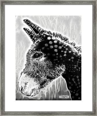 Spotted Donkey- Black And White Framed Print by Marlene Watson