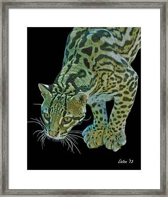 Spotted Predator Framed Print by Larry Linton