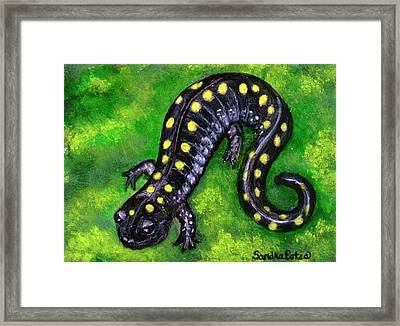 Framed Print featuring the painting Spotted Salamander by Sandra Estes