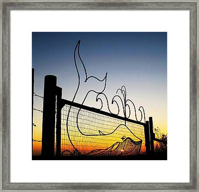 Spouting Humpback Whale At Sunset Framed Print by John King