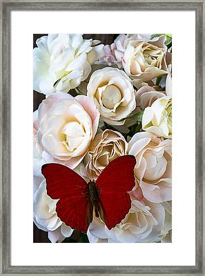 Spray Roses And Red Butterfly Framed Print by Garry Gay