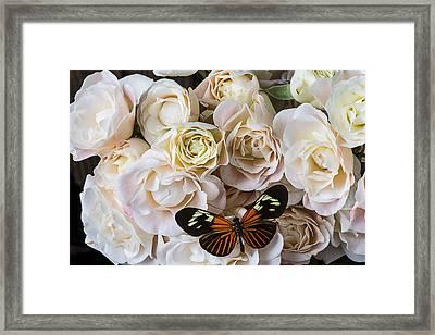 Spray Roses Framed Print by Garry Gay