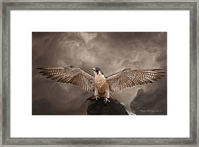 Spread Your Wings Framed Print by Wayne Bonney